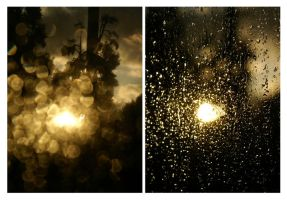 rain, california, and other unlikely pairs by austheke