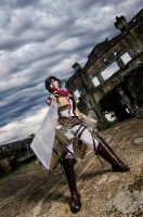 Mikasa-stand-and-fight by kuricurry