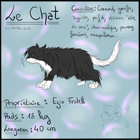 NF - Le Chat refsheet by LadyNinetales