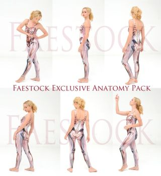 Faestock Exclusive Anatomy Pack by faestock