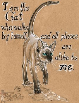 I am the Cat by redcoatcat