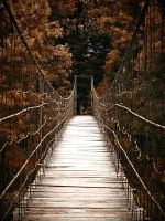 Suspension bridge... by Csipesz