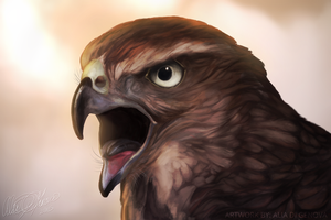 Juvenile Cooper's Hawk - Speed Art by Kairi292