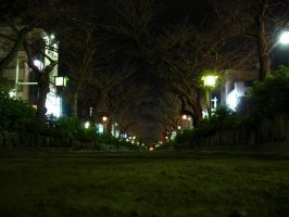 Kamakura by night by jezebel144