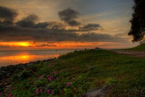 Sunrise view of Jelutong, Penang by fighteden