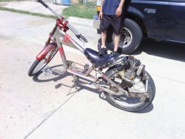 Home built weed Wacker bike by denied135