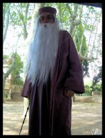 Albus P. W. B. Dumbledore by ECDLE-Cosplay