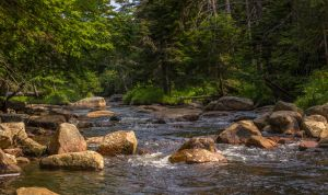 Little creek by philipbrunner