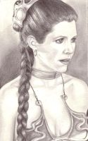Princess Leia by weezie