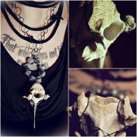 Vertebrae Necklace. 2 by GrotesqueDarling13