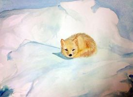 Watercolor Arctic Fox by Chromophoria