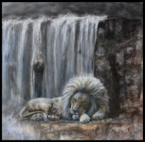 The Lion Sleeps Tonight by Ceridwens-gallery