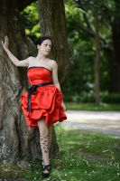 Red Satin 22 by Anariel-Stock