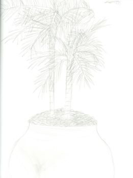 Palm Trees by Leon-Fuego