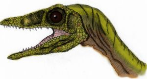 JP Compsognathus Colored by yankeetrex