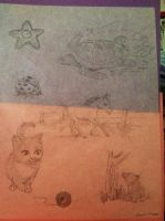 Baby animales, sea, and garden [Quick sketching] by VISIONARYGirl