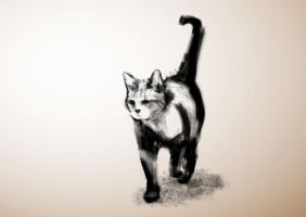 Cat Painting 19 (99 cats) by fuzzytint