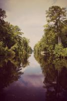 Swamp Canal by DonLeo85