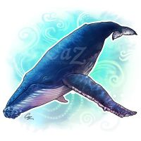 Humpback Whale by CazziArt