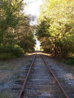 Train Tracks 1 by weirdlynormal249