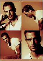 William Levy 2nd Edition by inmany