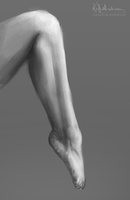 leg study by iCasseith