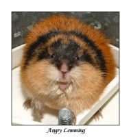 Angry Lemming by theborax