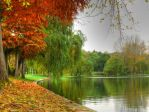 L'automne by dianora