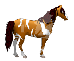 New ATC Stable Addition Ref #3 by AmzyTheChangeling