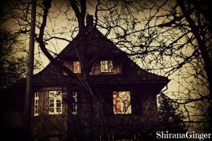 Haunted mansion by ShiranaGinger