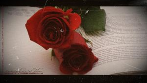 Book and Roses by RazielMB
