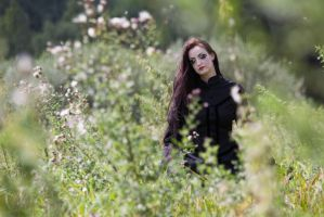 Stock - Dreaming gothic in the field dark by S-T-A-R-gazer