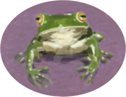Frog2 by speckledfrog