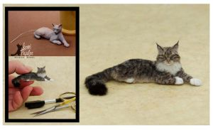 Miniature Maine Coon Sculpt - Before and After by Pajutee