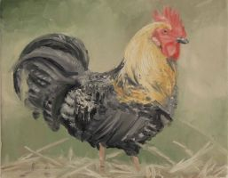 Rooster by Iliketoplayinthedirt