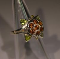 Cloudberry ring by timjo