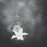 Time has passed by StopScreamGraphy