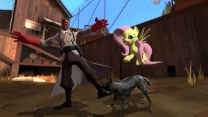 gmod - Fluttershy teaches Medic... by Stormbadger