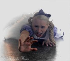 Fallen Down the Rabbit Hole by MakaylaElaine1