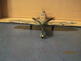 P-39 Airacobra: Front View by cloudyrainbow561