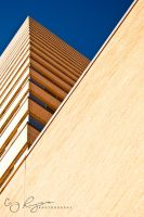 Lubbock Building by creynolds25