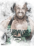 Poster - Survivor Series 2014 by Jeri-Spy