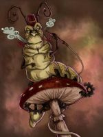 Alice madness returns - Caterpillar by LadyFiszi