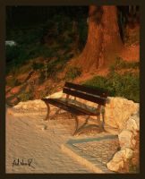 bench of loneliness by ad-shor
