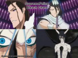 Bleach Supreme Feline Favourite Characters by SupremeFeline