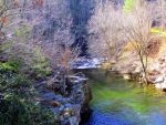 Green River by RealityIntolerant