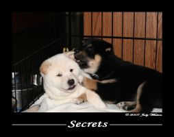 Secrets by Tazzy-