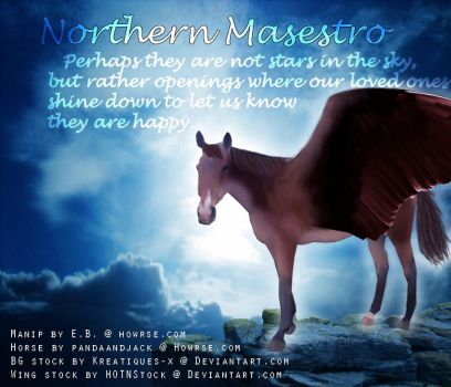 Northern Maestro by Ride2Live-Live2Ride