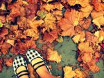 Autumn Leaves by chloh