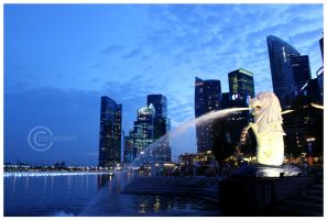 Merlion Singapore by DziGokey